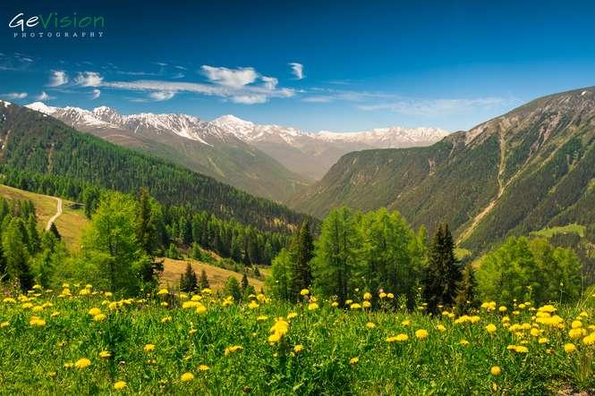 Davos Schweiz Switzerland Mountain Alps Alpen Switzerland Ski Resort Landscape Landschaft Panorama