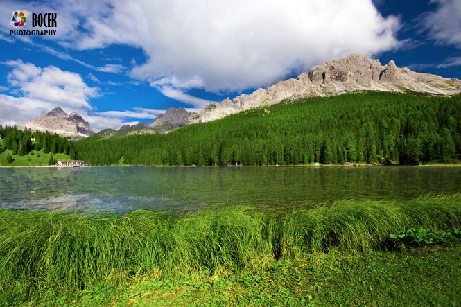 View to Lake Misurina, conifer forest and Dolomites, Italy, Europe